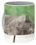 Cat Chillax Coffee Mug