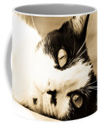 Cat Days Of Summer Coffee Mug