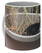 Cat In Flower Pot. Coffee Mug