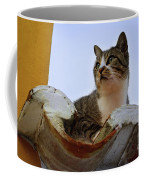 Cat In The Roof Coffee Mug