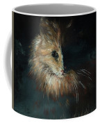 Cat In The Shade Coffee Mug