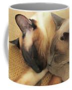 Cat Nap With Toby And Sadi Coffee Mug