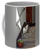 Cat On Steps Coffee Mug