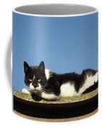 Cat On The Roof Coffee Mug