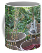 Cat Playing In Flowerpot Coffee Mug