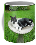 Cat Relaxing In A Birdbath In The Summertime  Coffee Mug