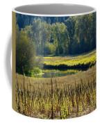 Cat Tails In The Sun Coffee Mug