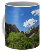 Catalina Mountains In Tucson Arizona Coffee Mug