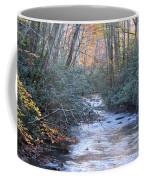Cataloochee Creek Coffee Mug