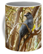 Catbird In Spring Coffee Mug