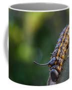 Macro -caterpillar Coffee Mug