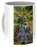 Cathedral Falls 3 Coffee Mug