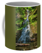 Cathedral Falls - Paint Coffee Mug