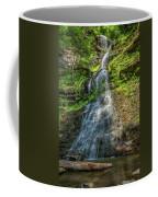 Cathedral Falls Coffee Mug