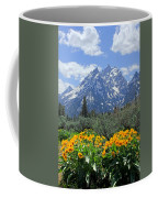 Dm9328-cathedral Group Tetons  Coffee Mug