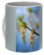 Catkin Time 2 Coffee Mug