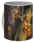 Catkin Time 4 Coffee Mug