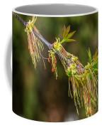Catkin Time 5 Coffee Mug