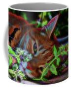 Catnip Chillin Coffee Mug by Beth Sawickie