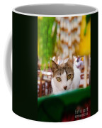 Cat's Eye On Me Coffee Mug