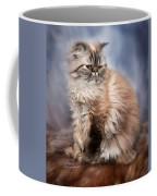 Cattitude 2 Coffee Mug