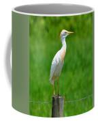 Cattle Egret On Post Coffee Mug