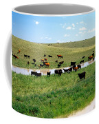 Cattle Graze On Reclaimed Land Coffee Mug