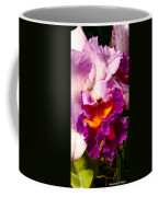 Cattleya IIi Coffee Mug