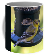 Caught At The Feeder Coffee Mug
