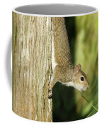 Cautious Critter Coffee Mug