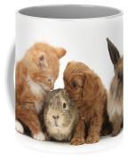 Cavapoo Pup, Rabbit, Guinea Pig Coffee Mug
