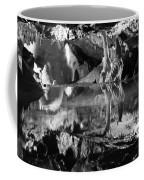 Cave Reflection 2 Coffee Mug