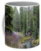 Above The Falls Coffee Mug