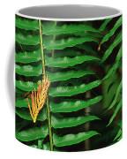 Cedar And Fern Coffee Mug