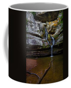 Cedar Falls In Hocking Hills State Park Coffee Mug