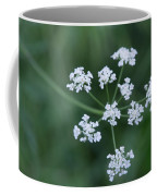 Cedar Park Texas Hedge Parsley Coffee Mug
