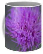 Cedar Park Texas Purple Thistle Coffee Mug