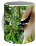 Cedar Waxwing Beauties 6 Coffee Mug