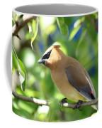 Cedar Waxwing Curiosity Coffee Mug