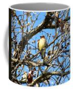 Cedar Waxwing I Coffee Mug