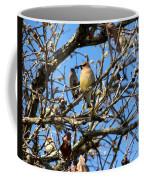 Cedar Waxwing II Coffee Mug