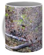 Cedar Waxwings Feeding 2 Coffee Mug
