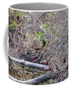 Cedar Waxwings Feeding Coffee Mug