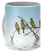 Cedar Waxwings On A Branch Coffee Mug