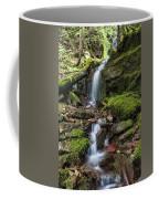 Centennial Falls Coffee Mug