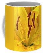 Center Of A Lily Coffee Mug