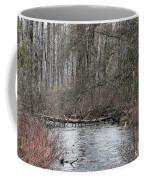 Centipede Bridge Coffee Mug