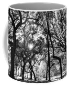 Central Park In Black And White Coffee Mug