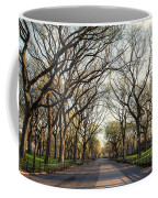 Central Park Nyc Coffee Mug