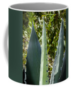 Century Plant Coffee Mug